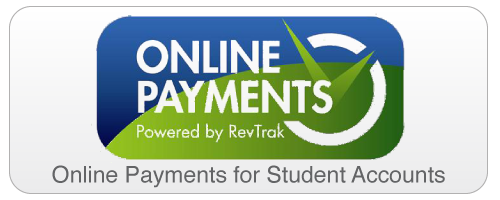 Online Payments: new revtrack